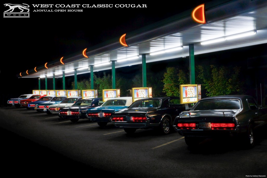 Poster - Cougar Drive In - New